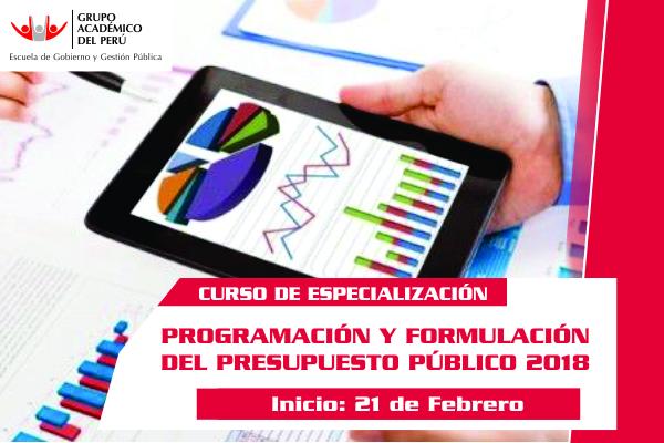 Programación Y Formulación Del Presupuesto Publico